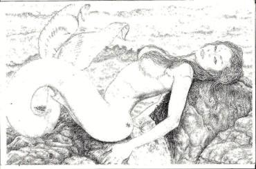 "From the ""Zodiac"" series: Pisces, by Heshima Denham, ©2007"